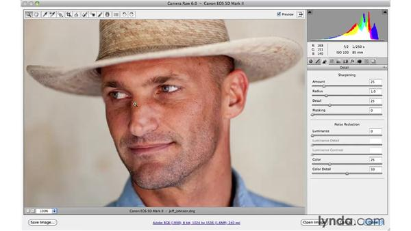 Camera raw workflow: Photoshop CS5 for Photographers