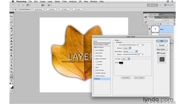Layer style effects: Photoshop CS5 for Photographers