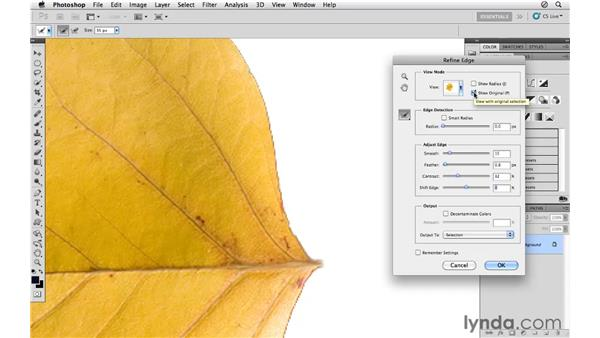 Using Refine Edge to improve selections: Photoshop CS5 for Photographers