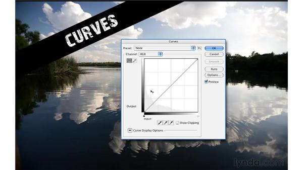 Introducing the Curves dialog box: Photoshop CS5 for Photographers