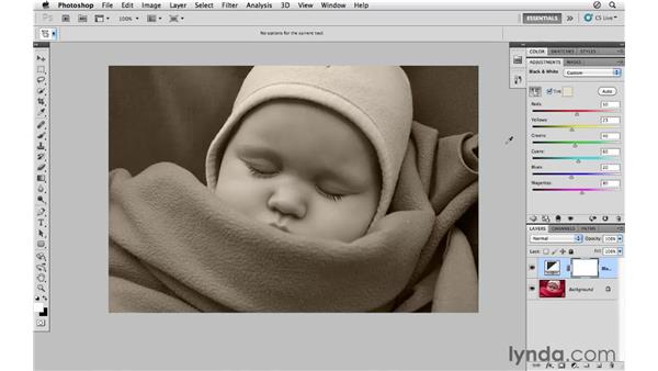 Adding grain and tone to a black-and-white image: Photoshop CS5 for Photographers