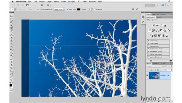 Resizing and sharpening for a specific print size: Photoshop CS5 for Photographers