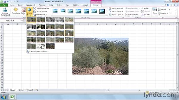 Editing pictures with the improved picture tools: Excel 2010 New Features