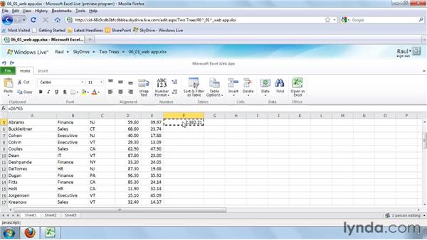 Editing a worksheet in the Excel Web App: Excel 2010 New Features