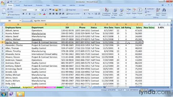 Definition and examples: Excel 2007: Macros in Depth