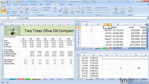 Moving and copying data across multiple workbooks: Excel 2007: Managing Multiple Worksheets and Workbooks