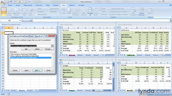 Summarizing data from multiple workbooks with PivotTables: Excel 2007: Managing Multiple Worksheets and Workbooks