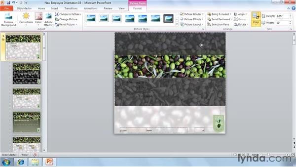 Easier photo cropping: PowerPoint 2010 New Features