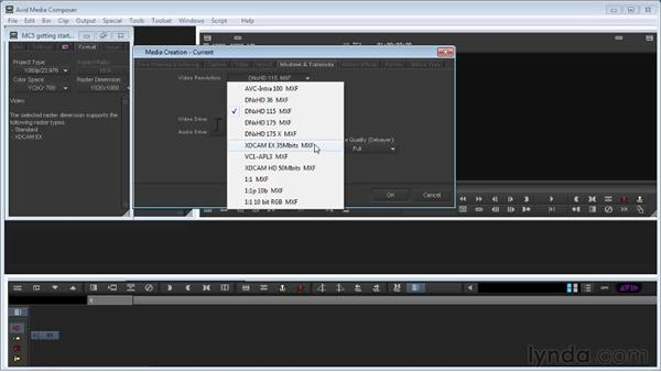 Understanding media formats and the Format tab: Avid Media Composer 5 Getting Started