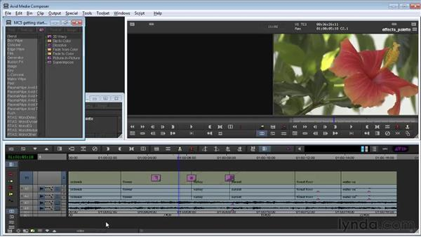 Working in the Effects palette: Avid Media Composer 5 Getting Started