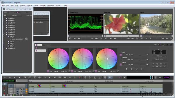 Working with basic color correction: Avid Media Composer 5 Getting Started