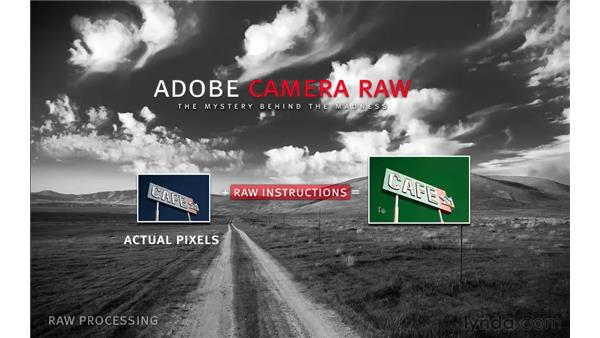 What is Camera Raw?: Photoshop CS5 for Photographers: Camera Raw 6