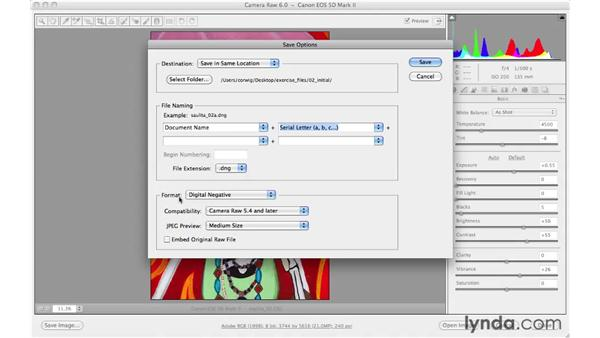 Converting or saving to the DNG format : Photoshop CS5 for Photographers: Camera Raw 6