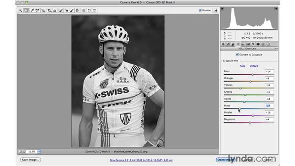 Converting to black and white: Photoshop CS5 for Photographers: Camera Raw 6