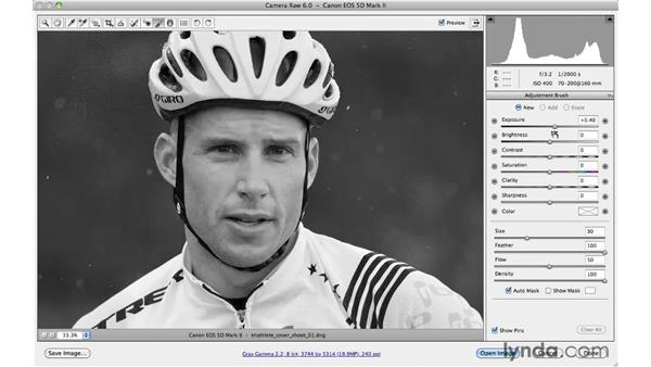 Making a localized correction: Photoshop CS5 for Photographers: Camera Raw 6