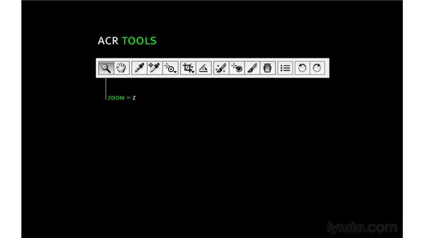 Navigating the interface and the toolbar: Photoshop CS5 for Photographers: Camera Raw 6