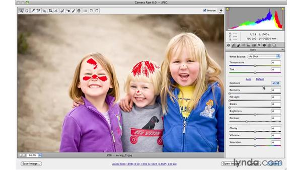 Using the histogram: Photoshop CS5 for Photographers: Camera Raw 6
