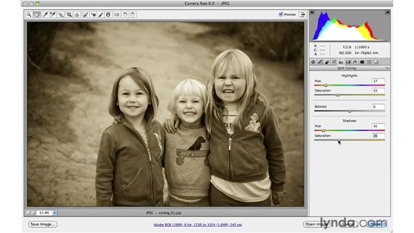 Previewing before and after different adjustments: Photoshop CS5 for Photographers: Camera Raw 6