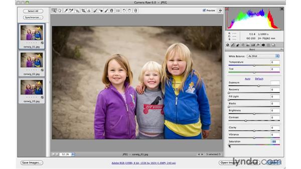 Working with multiple files : Photoshop CS5 for Photographers: Camera Raw 6