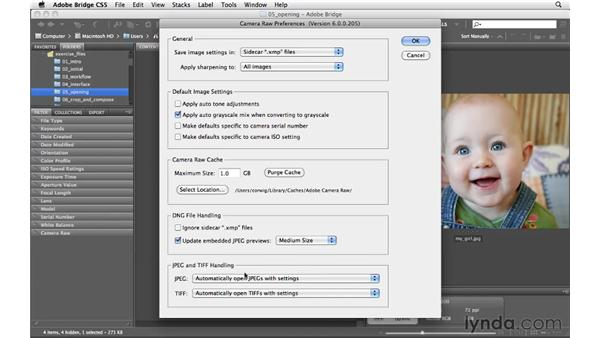 Opening JPGs and TIFFs in Bridge: Photoshop CS5 for Photographers: Camera Raw 6