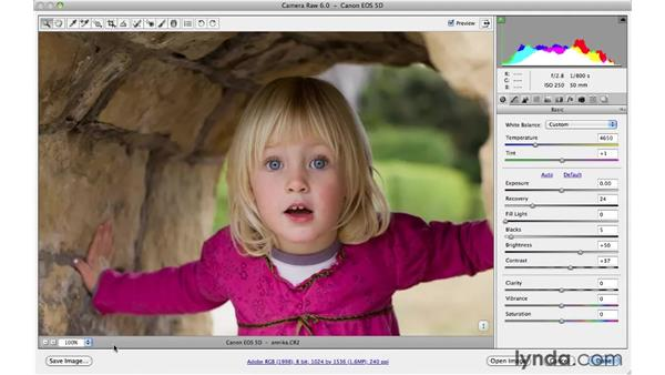 Resizing in Camera Raw with workflow options: Photoshop CS5 for Photographers: Camera Raw 6
