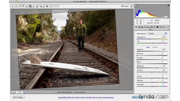 Cropping with an aspect ratio: Photoshop CS5 for Photographers: Camera Raw 6