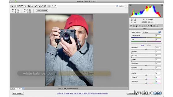 Improving color balance: Photoshop CS5 for Photographers: Camera Raw 6