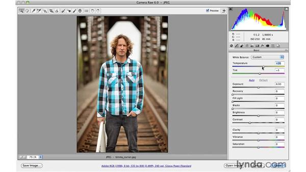 Using the White Balance tool and controls: Photoshop CS5 for Photographers: Camera Raw 6