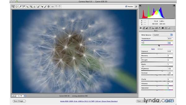 Color balance resources: Photoshop CS5 for Photographers: Camera Raw 6