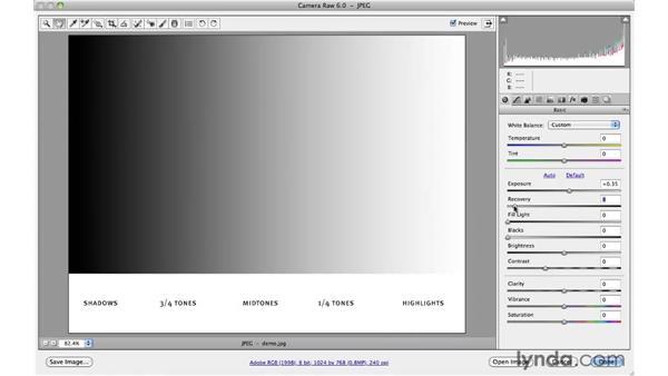 Deconstructing the basic adjustments : Photoshop CS5 for Photographers: Camera Raw 6