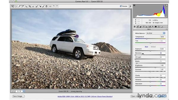 Recovering highlights : Photoshop CS5 for Photographers: Camera Raw 6