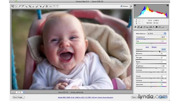 Making basic adjustments more quickly : Photoshop CS5 for Photographers: Camera Raw 6