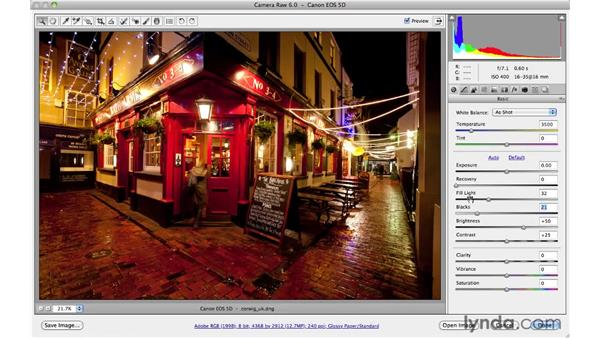 The relationship between tone and color: Photoshop CS5 for Photographers: Camera Raw 6