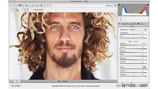 Increasing clarity : Photoshop CS5 for Photographers: Camera Raw 6