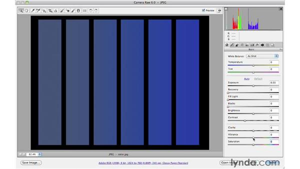 Understanding Vibrance and Saturation : Photoshop CS5 for Photographers: Camera Raw 6