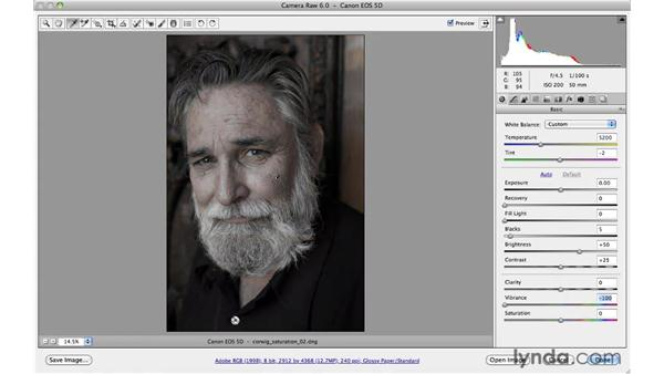 Improving color with Vibrance : Photoshop CS5 for Photographers: Camera Raw 6