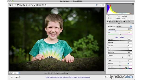 Using Vibrance and Saturation together : Photoshop CS5 for Photographers: Camera Raw 6