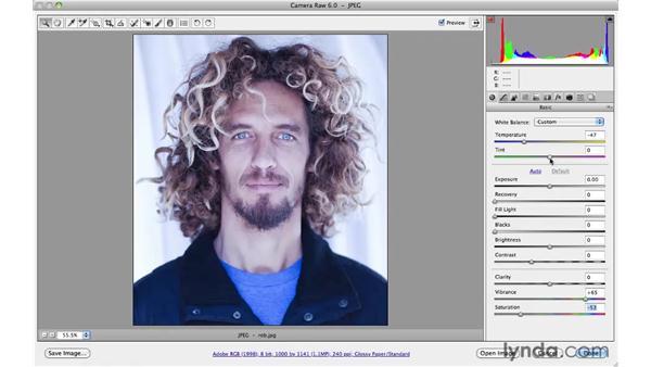 Color creativity: Photoshop CS5 for Photographers: Camera Raw 6