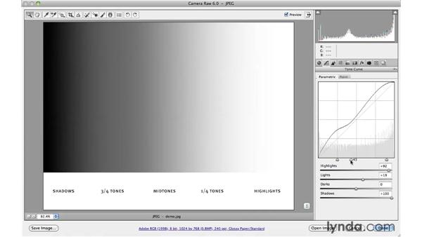 Learning about the parametric and point tone curves: Photoshop CS5 for Photographers: Camera Raw 6