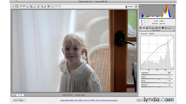 Using the parametric curve : Photoshop CS5 for Photographers: Camera Raw 6
