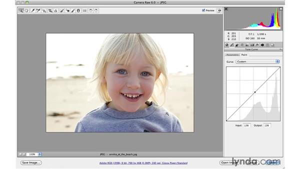 Using the point curve : Photoshop CS5 for Photographers: Camera Raw 6