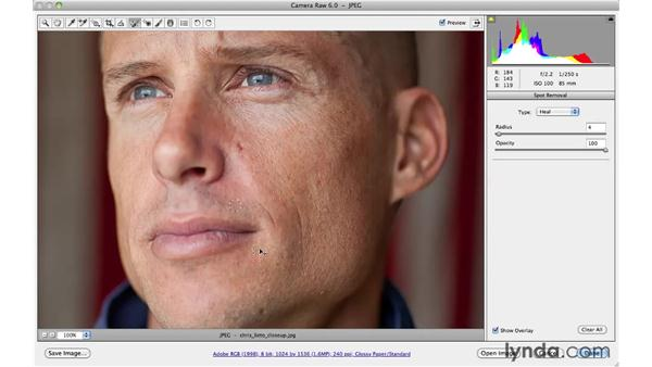 Removing blemishes on a face: Photoshop CS5 for Photographers: Camera Raw 6