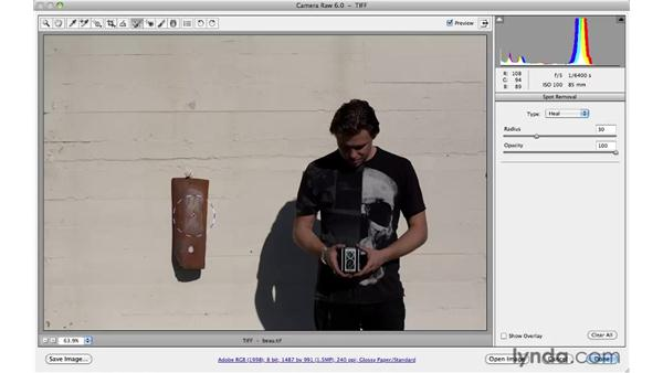 Cloning away small background distractions: Photoshop CS5 for Photographers: Camera Raw 6