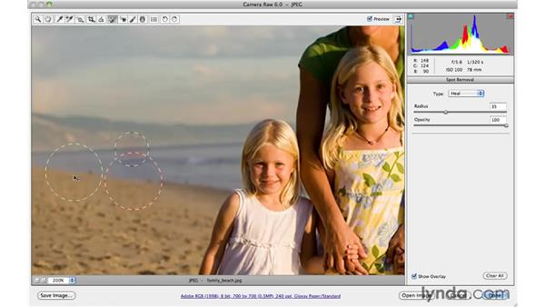 Removing distracting background elements: Photoshop CS5 for Photographers: Camera Raw 6