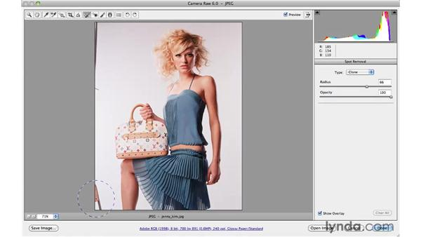 Cleaning up a studio background: Photoshop CS5 for Photographers: Camera Raw 6