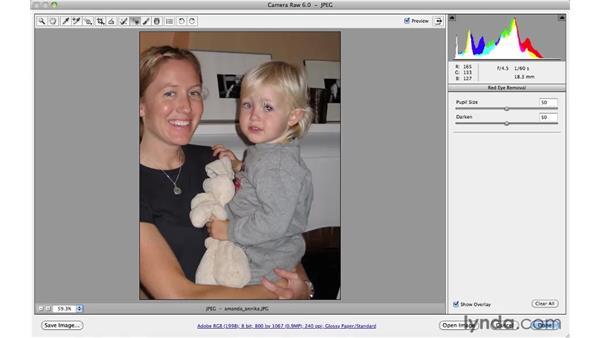 : Photoshop CS5 for Photographers: Camera Raw 6