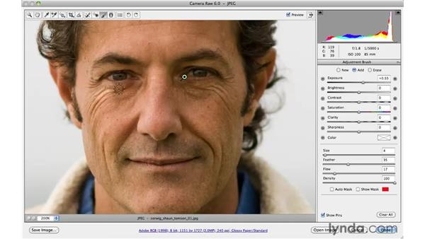 Increasing visual interest by brightening shadows: Photoshop CS5 for Photographers: Camera Raw 6