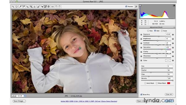 Increasing visual interest by heightening saturation: Photoshop CS5 for Photographers: Camera Raw 6