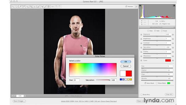 Changing color: Photoshop CS5 for Photographers: Camera Raw 6