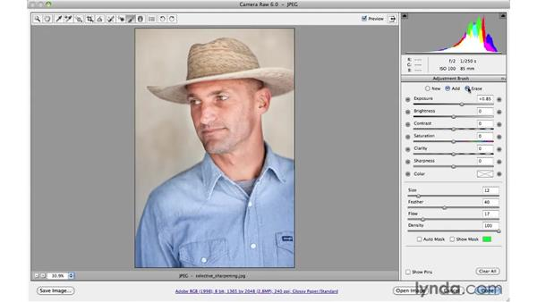 : Photoshop CS5 for Photographers: Camera Raw 6
